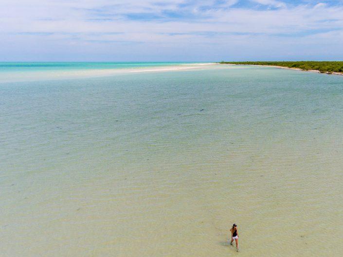 Isla Holbox, Mexiko, Drohne, Dji, Phantom 4, Drone, Villa Flamingo, Sunset, Casa El Viento, Punto Mosquito, Golfcars, El Bajo, Flamingos, Pelikan, Leguan