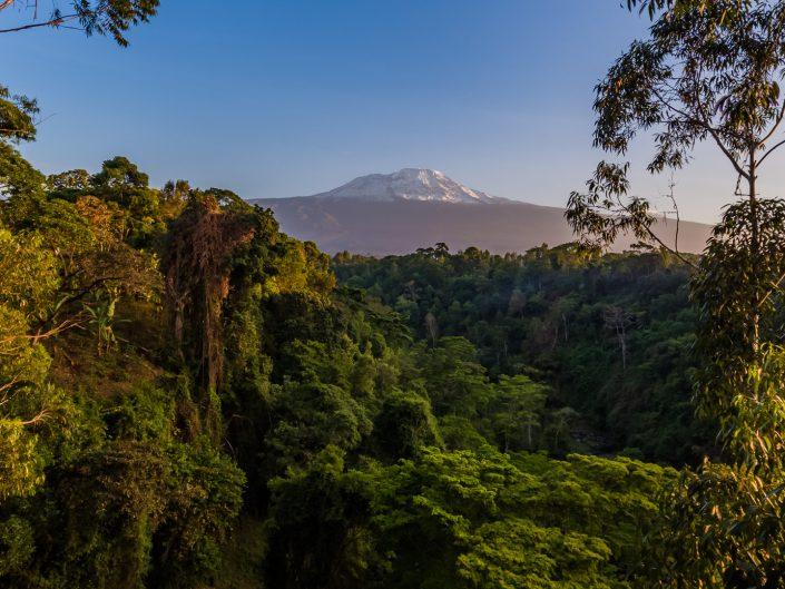 rundugai, kilimanjaro, moshi, kaliwa, massai, boma, locals, hot springs
