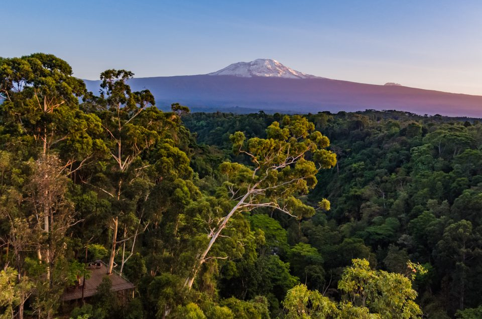 the top of africa – Kilimanjaro